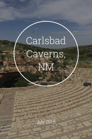 Carlsbad Caverns, NM July 2015