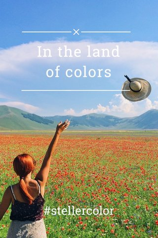 In the land of colors #stellercolor
