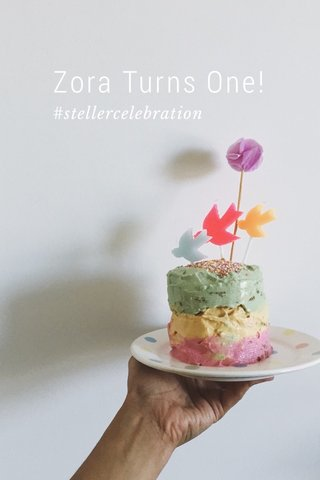 Zora Turns One! #stellercelebration