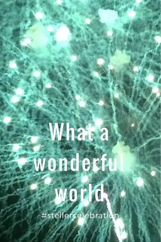 What a wonderful world #stellercelebration