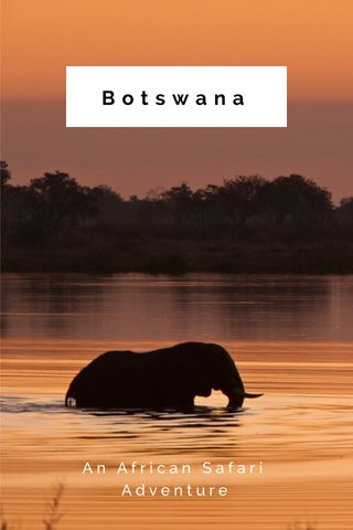 Botswana An African Safari Adventure