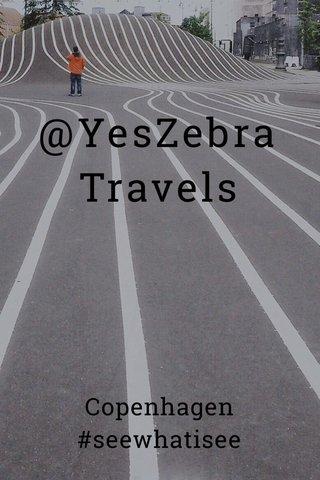 @YesZebra Travels Copenhagen #seewhatisee