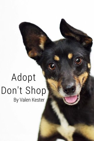 Adopt Don't Shop By Valen Kester