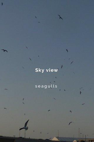Sky view seagulls