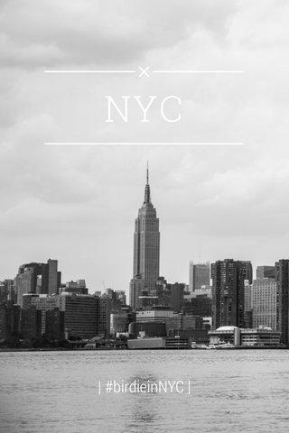 NYC | #birdieinNYC |