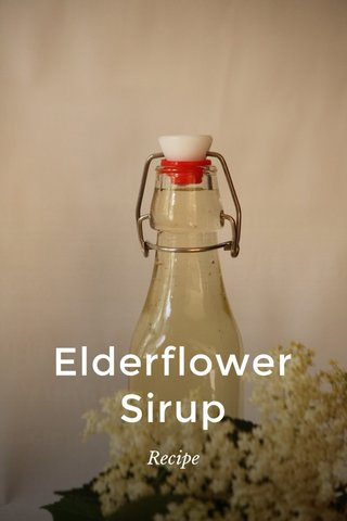 Elderflower Sirup Recipe