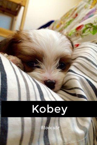 Kobey #toocute