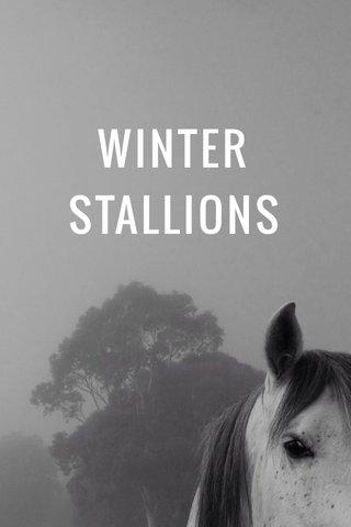 WINTER STALLIONS