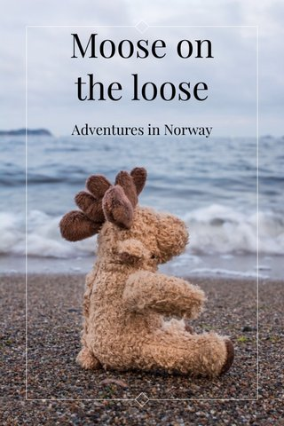 Moose on the loose Adventures in Norway