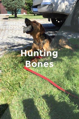 Hunting Bones