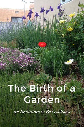 The Birth of a Garden an Invitation to Be Outdoors