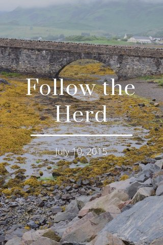 Follow the Herd July 10, 2015