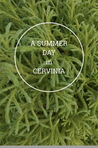 A SUMMER DAY in CERVINIA