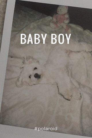 BABY BOY #polaroid