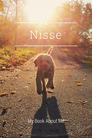 Nisse My Book About Me