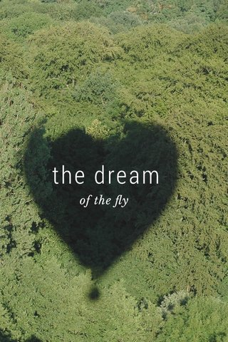 the dream of the fly