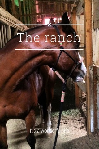 The ranch It's a wonderful life