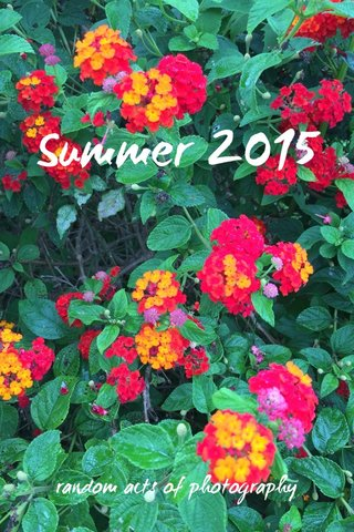 Summer 2015 random acts of photography