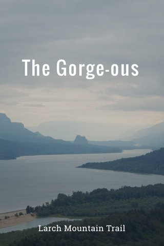 The Gorge-ous Larch Mountain Trail