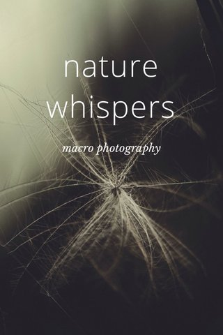 nature whispers macro photography