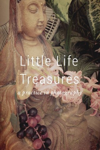 Little Life Treasures a practice in photography