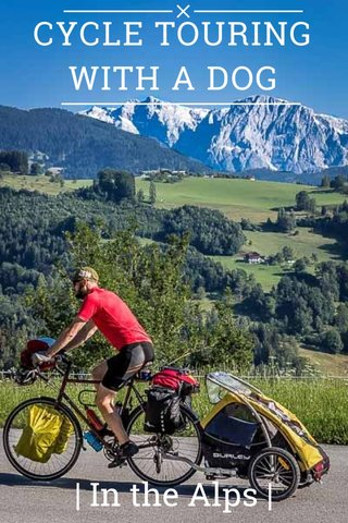 CYCLE TOURING WITH A DOG | In the Alps |