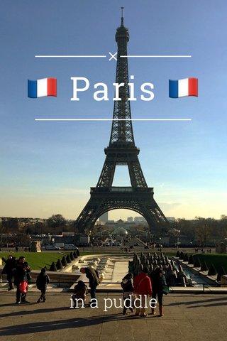 🇫🇷 Paris 🇫🇷 in a puddle