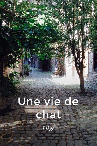 Une vie de chat Liège