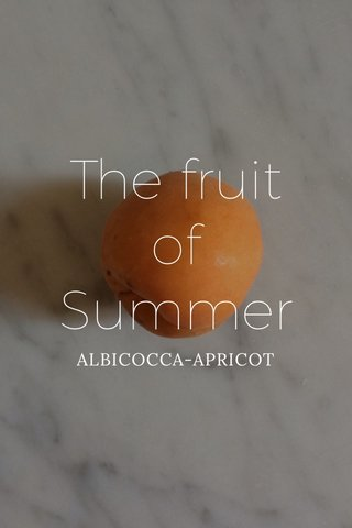 The fruit of Summer ALBICOCCA-APRICOT