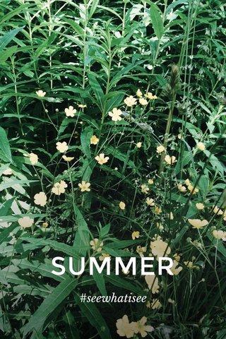 SUMMER #seewhatisee