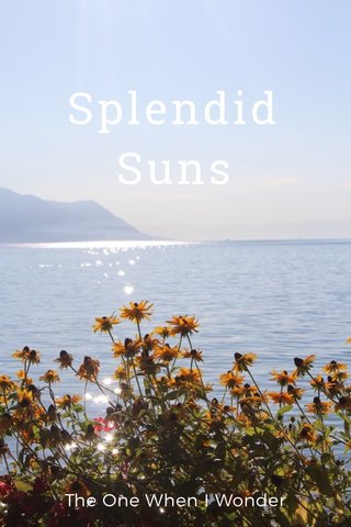 Splendid Suns The One When I Wonder