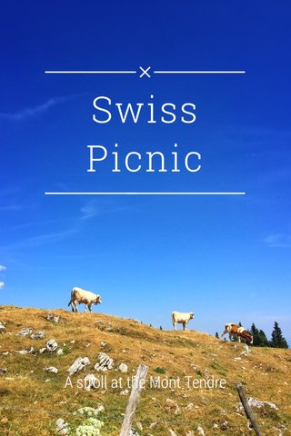 Swiss Picnic A stroll at the Mont Tendre