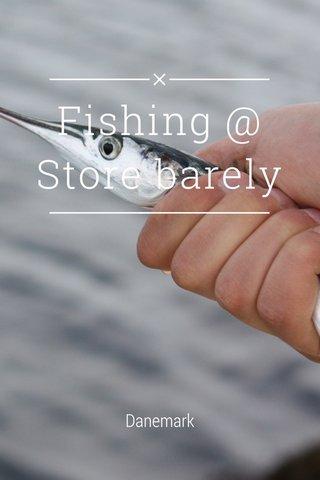 Fishing @ Store barely Danemark