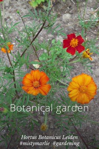 Botanical garden Hortus Botanicus Leiden #mistymarlie #gardening