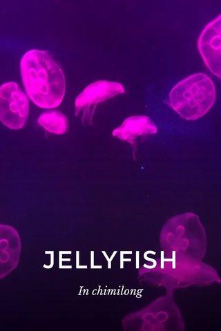 JELLYFISH In chimilong