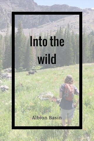 Into the wild Albion Basin