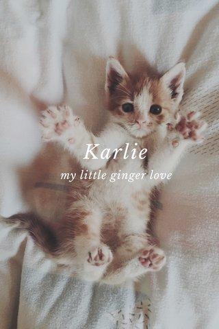 Karlie my little ginger love