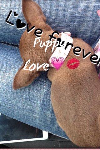 Puppy love💗💋