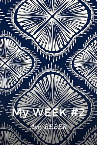 My WEEK #2 Amy REBER