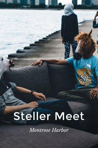 Steller Meet Montrose Harbor