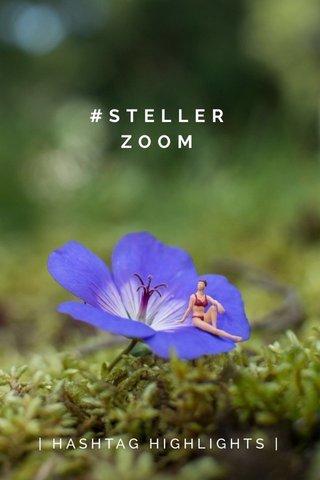 #STELLERZOOM | HASHTAG HIGHLIGHTS |