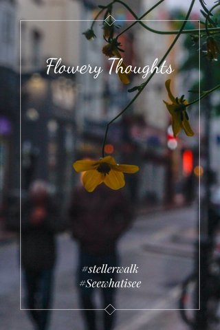 Flowery Thoughts #stellerwalk #Seewhatisee
