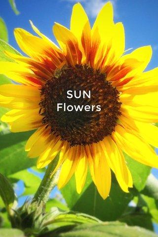 SUN Flowers messengers of light