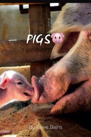 PIGS🐷 By Tejee Bains