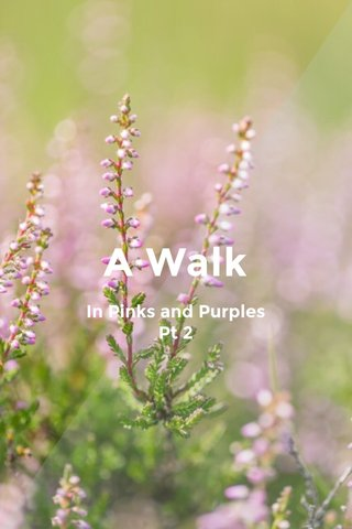 A Walk In Pinks and Purples Pt 2