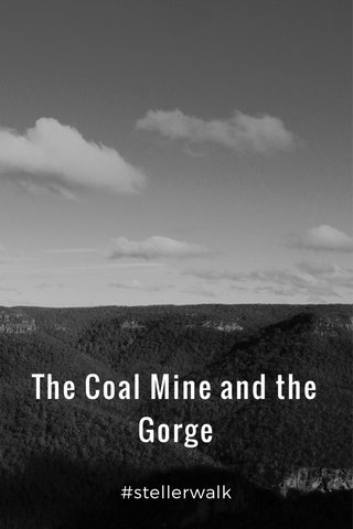 The Coal Mine and the Gorge #stellerwalk