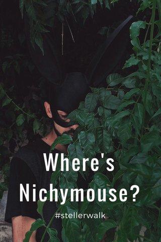 Where's Nichymouse? #stellerwalk