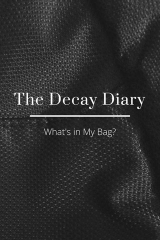 The Decay Diary What's in My Bag?