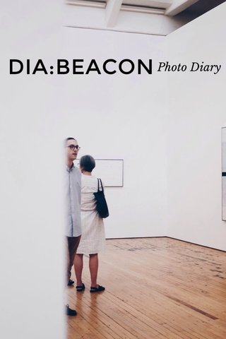 DIA:BEACON Photo Diary