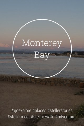 Monterey Bay #goexplore #places #stellerstories #stellermeet #stellar walk #adventure